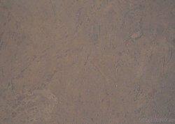 Пробковые полы Corkart 6 мм, клеевые с тонировкой без фаски PK 115 cappuccino